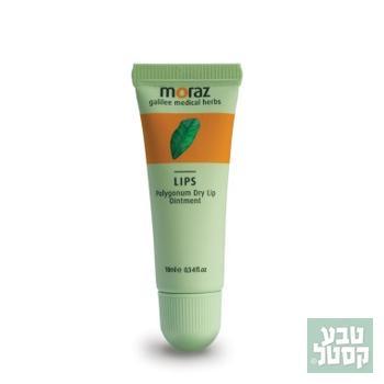 מגן שפתון טיפולי 10 מ'ל - מורז